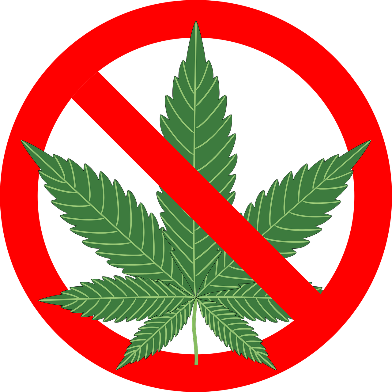 Are Cannabis Laws Paternalistic?