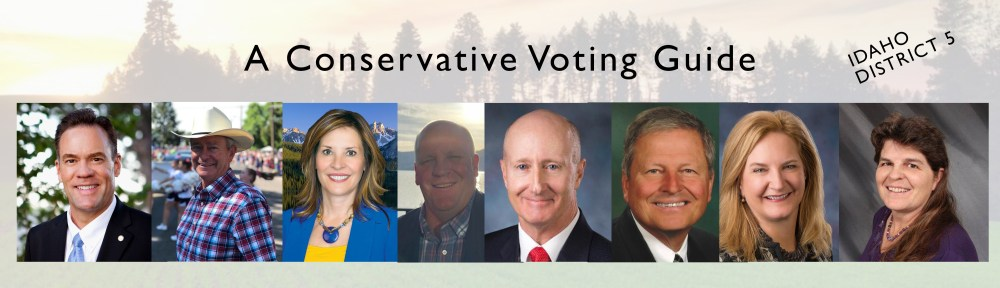 Idaho Conservative Voting Guide Nov. 2018